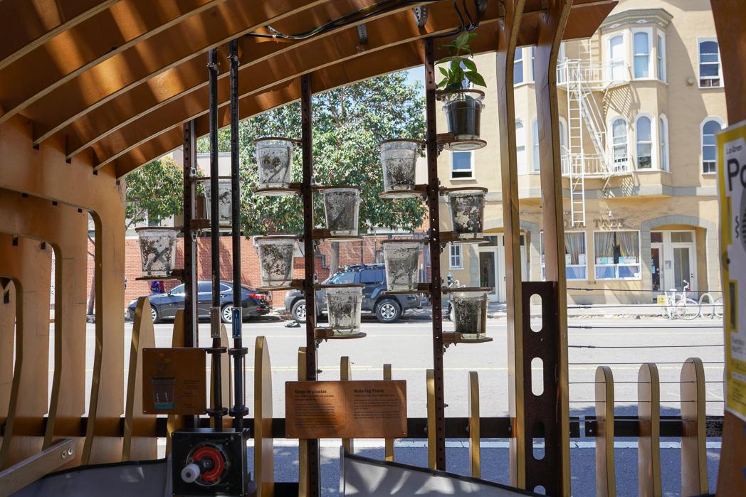 IMAGE: https://tjb.smugmug.com/Urban/i-MFzwk3P/0/O/Urban-nature-1-5.jpg