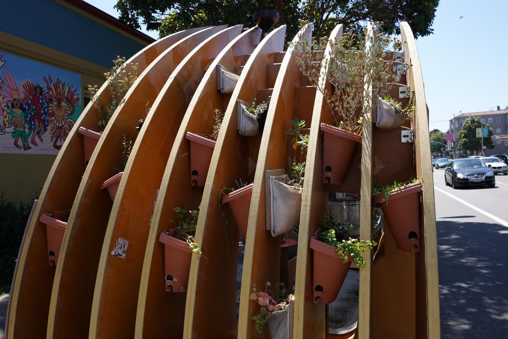 IMAGE: https://tjb.smugmug.com/Urban/i-xKG4XwG/0/O/Urban-nature-1-3.jpg